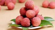 В чем заключается польза китайских чудо-ягод личи