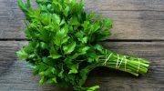 4 секрета, как сохранить зелень свежей максимально долго