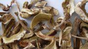 Белый сушеный гриб: польза и вред