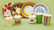 Особенности одноразовой бумажной посуды