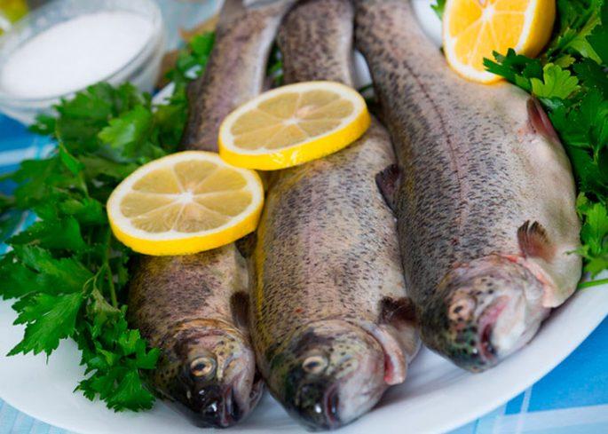 Диетические сорта рыбы